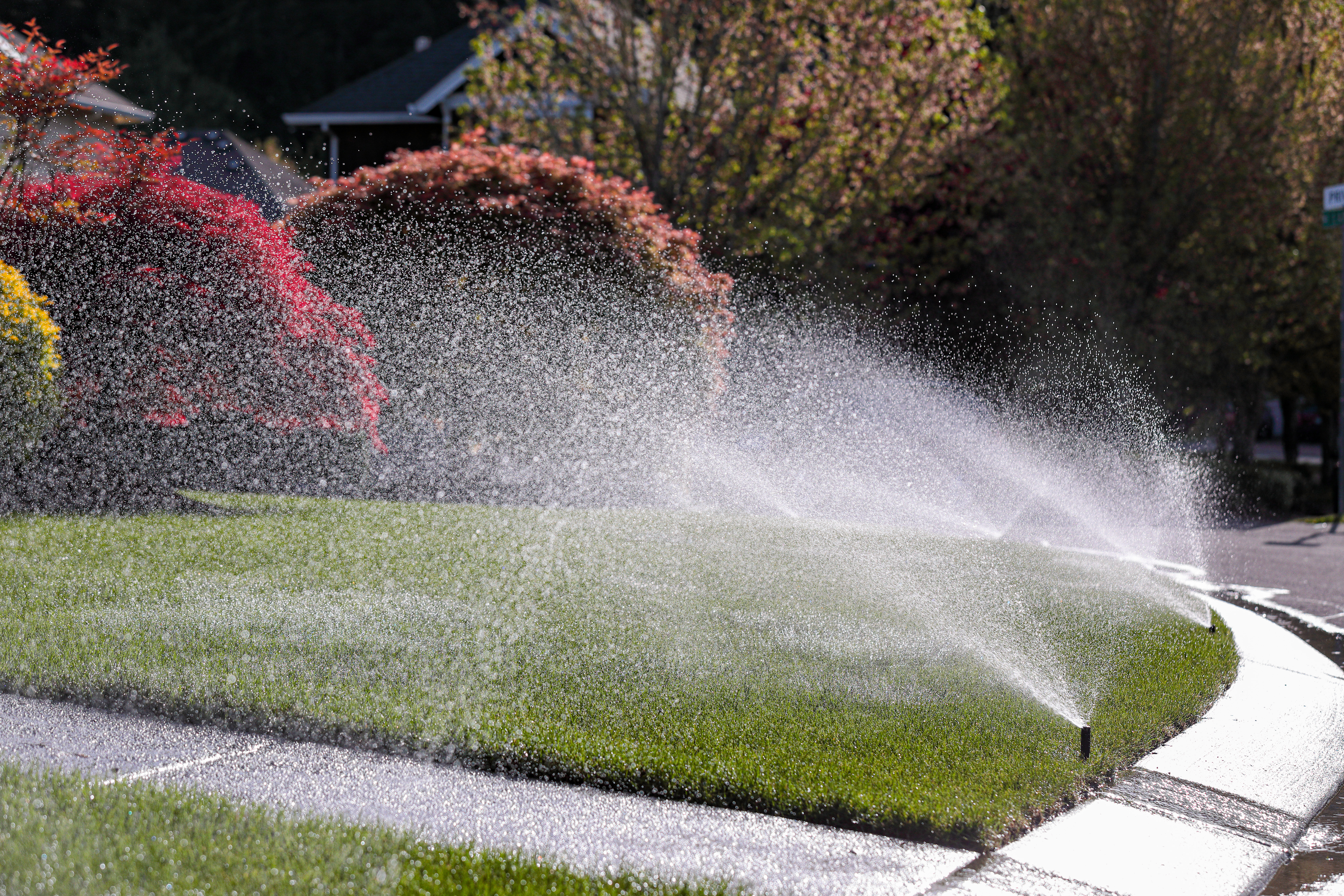 Sprinkling system going off on residential lawn